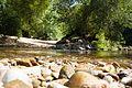 Río Tea La Noria.jpg