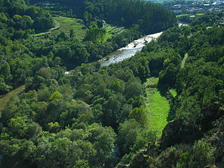 Río Ulla Galicia 043.jpg