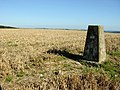 Rackham Hill Trig Point - geograph.org.uk - 44566.jpg