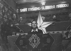 State Anti-fascist Council for the National Liberation of Bosnia and Herzegovina - Rada Vranješević, member of the AFŽ and People's Hero of Yugoslavia, speaking at the first ZAVNOBiH session