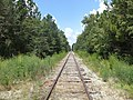 Railroad at Nashville Mills Road heading North.JPG