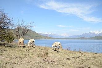 Rara Lake - Image: Rara ee