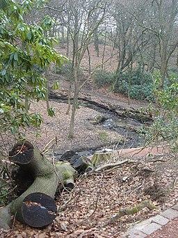 Raveden Brook nature trail, Smithills Hall - geograph.org.uk - 116126