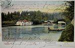 Razglednica tivolskega ribnika 1902.jpg
