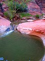 Red Reef Trail in Red Cliffs Recreation Area DyeClan.com - panoramio (5).jpg