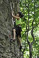 Reed's Creek - Climber.JPG