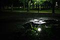 Reflection - parc de la Cité.jpg