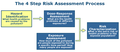 Risk assessment process.png
