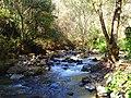River - panoramio (22).jpg