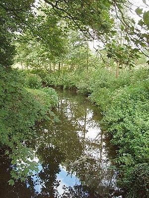 River Box - River Box near Scotland Street