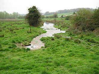River Gade - The Gade at Great Gaddesden
