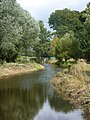 River Waveney - geograph.org.uk - 1462480.jpg