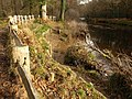 River revetment, Hembury Woods - geograph.org.uk - 1052989.jpg