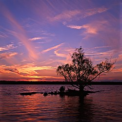 Sunset over one of the smallest of the Thousand Islands. It supports one tree and two shrubs.