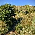 Rock-cornwall-england-tobefree-20150715-165145-2.jpg