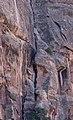 Rock Climbing (00622e50-5797-48b9-8b22-024a528245f0).jpg