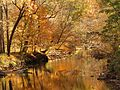 Rock Creek at Riley Spring Bridge - Flickr - treegrow.jpg