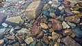 Rock ston of a small river2.jpg