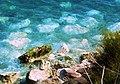 Rocks de la mar - panoramio.jpg