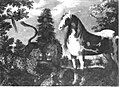 Roelant Savery (Werkstatt) - Paradiesische Tiergruppe - 6618 - Bavarian State Painting Collections.jpg