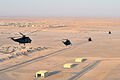 Royal Navy SeaKing Helicopters Fly Over Camp Bastion, Afghanistan MOD 45153245.jpg