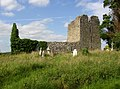 Ruined church near Killinan Castle, Co. Tipperary - geograph.org.uk - 207552.jpg