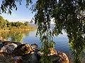Söğütler, sazlıklar, renkler ve gölün onları kucaklayışı.jpg