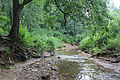 Samorodinka River 2.jpg