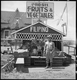 History of Asian Americans - San Lorenzo, California. Fruit and vegetable stand on highway operated by a Filipino American.