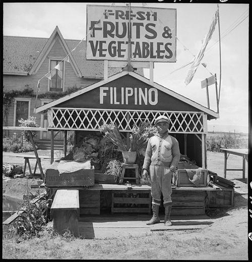 San Lorenzo, California. Fruit and vegetable stand on highway operated by Filipino. - History of Asian Americans