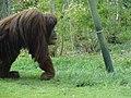 San diego zoo - panoramio.jpg