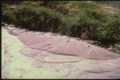 Sand boil Imperial 1979.tif
