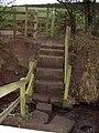 Sandstone Steps - geograph.org.uk - 637855.jpg