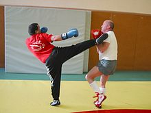 Восточные боевые искусства реферат 3954