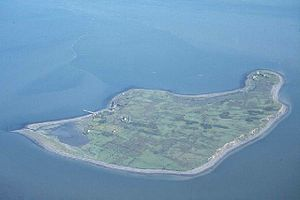 Senán mac Geirrcinn - Scattery Island from the air