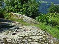 Schalenstein Plontabuora2.jpg