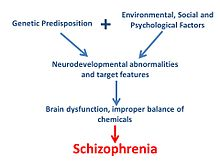 biological explanations to psychopathology The biological model of abnormality says that psychological disorders are a  result of biological issues according to this model, percy's depression might be.