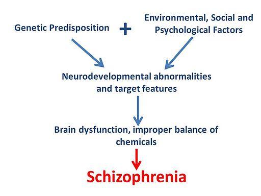 Schizophrenia flowchart