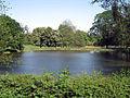 Schloss-Cappenberg-Wildpark-0002.jpg