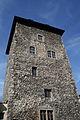 Schloss Brandis Turm.jpg