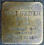 Horst Friedrich Hamm
