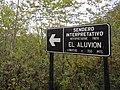 Sendero el Aluvión Parque Nacional Queulat.jpg