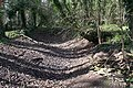 Shallow Quarry - geograph.org.uk - 710186.jpg