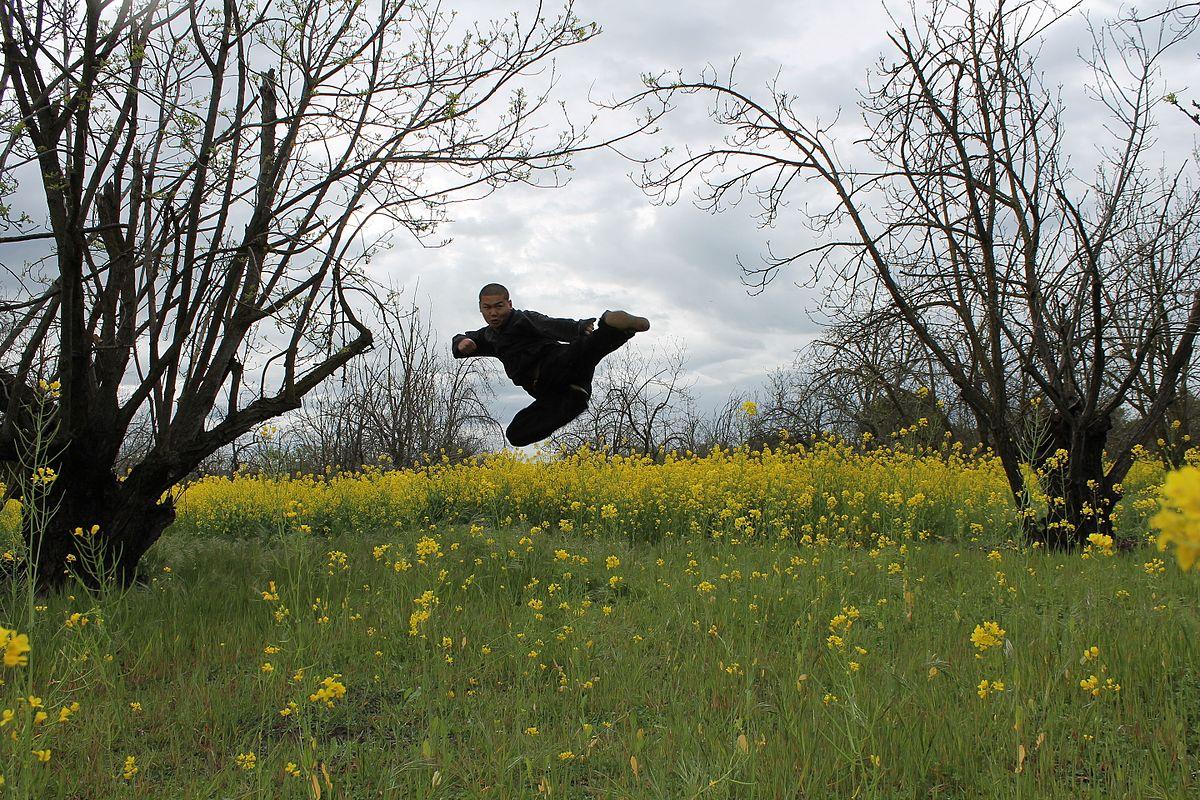 Kung Fu Schools In Staten Island