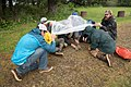 Shoreline Survival Training - Tongee National Forest 05.jpg