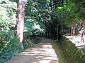 Shosha Engyoji059.jpg