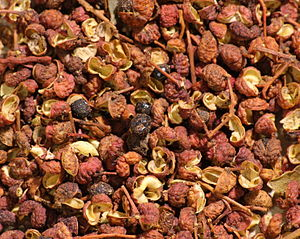 Sichuan pepper (Zanthoxylum), including the sp...