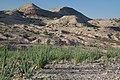 Sierra de las Cañas WSA (9471127537).jpg