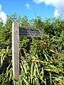 Signpost for green lane - geograph.org.uk - 239720.jpg