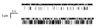 Single-molecule experiment - Image: Single Molecule Data Ion Channel Two Concentrations